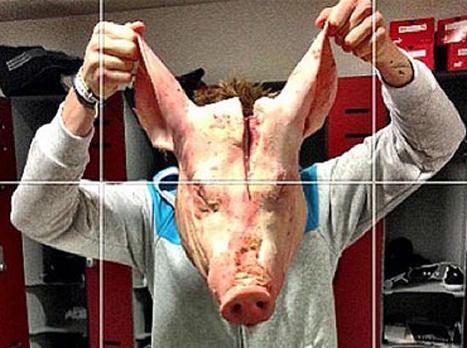 ראש החזיר שגרם למהומה