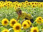 (Tim de Waele/Getty Images)