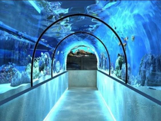 35 מטרים של מנהרה תת ימית