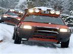 הסופה שבדרך: כללי התנהגות בנהיגה בשלג ובקרח