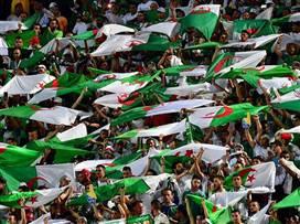 סיפקו מופע: החגיגות של אוהדי אלג'יריה