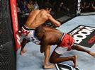 חשיפה, פציעות ובחורות: ה-UFC ב-2012