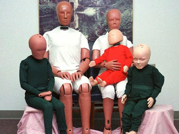 משפחת הייבריד 3