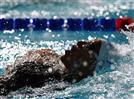 שחייה: טומרקין ועברי בגמר אליפות אירופה